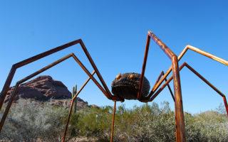 Desert Botanical Gardens Bugs Art Exhibit