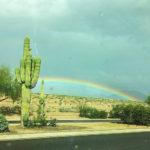 Happy Monday! { Arizona }