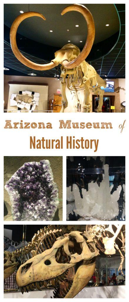 Arizona Museum of Natural History Mesa AZ
