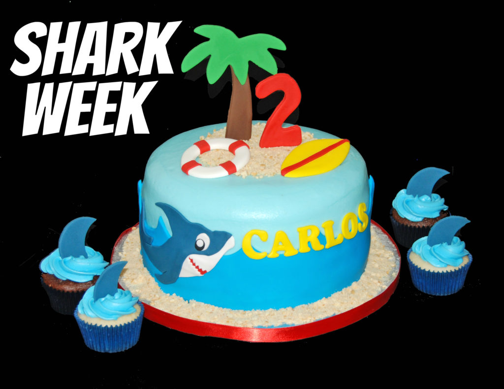 Shark Week Cake Inspiration Shark Cake and Cupcakes Sweet Shoppe
