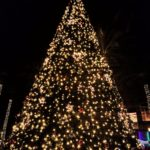 What a spectacular evening! Tempe Fantasy of Lights Parade and Tree Lighting