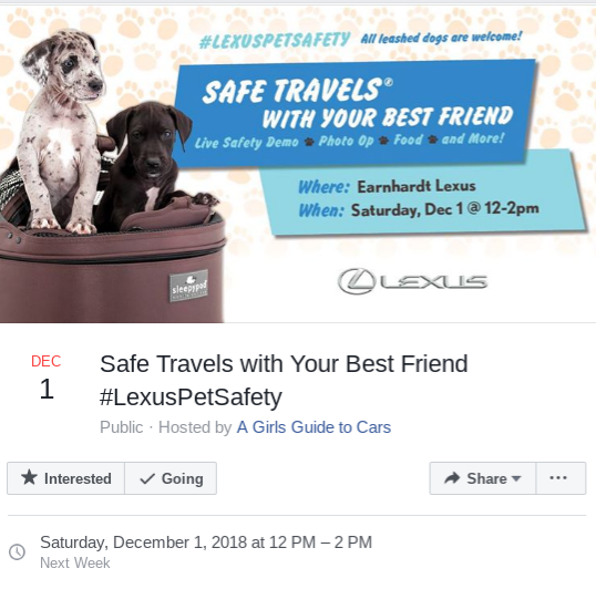 Lexus Pet Safety Travel Phoenix