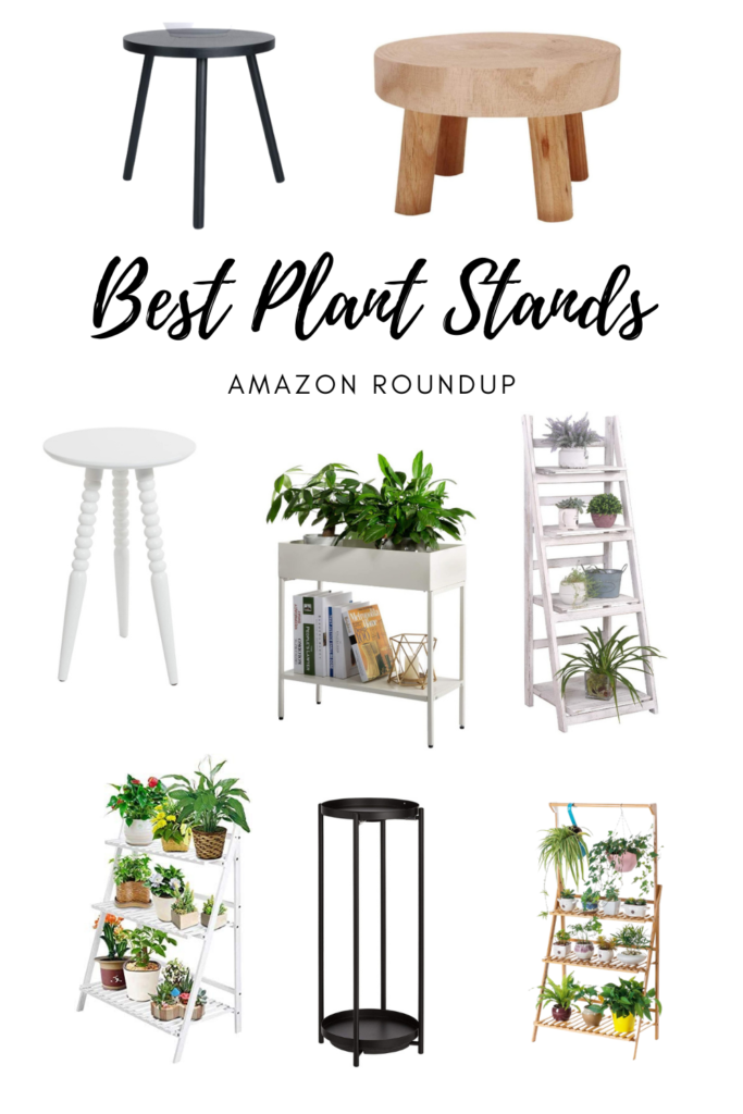 Best Plant Stands for Houseplants