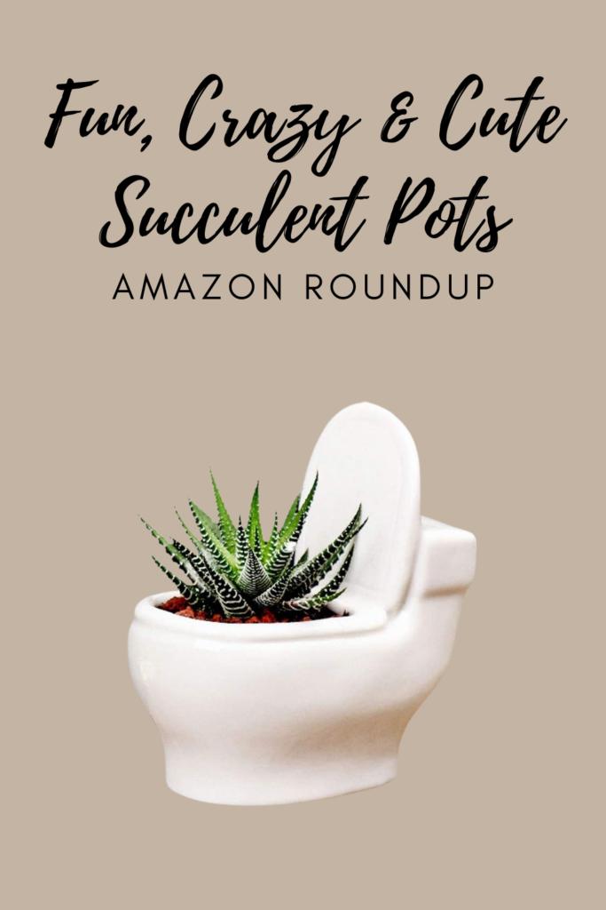 Fun, Crazy & Cute Succulent Pots